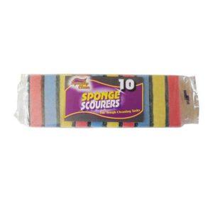 Squeaky Clean Sponge Scourers