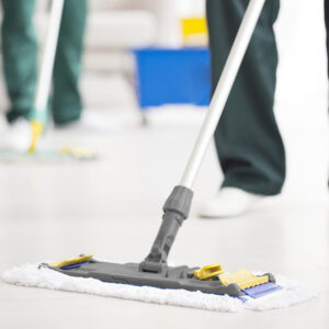 Flat Mopping Frames